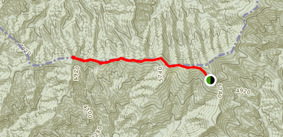 Silers Bald Trail Map