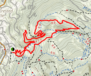 Schofield Pass and Devil's Punchbowl Trail Map