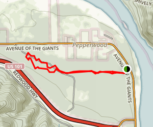 Drury Chaney Loop Trail Map