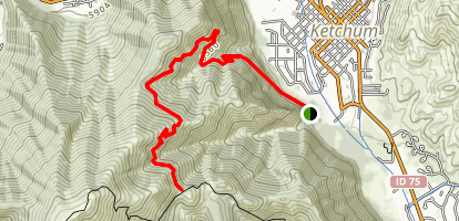 Bald Mountain: Cold Springs Trail Map