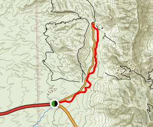 Tom Mays Unit Trail Map