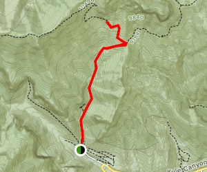 Cave Spring via Trail Canyon Map