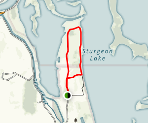 Oak Island Trail Map