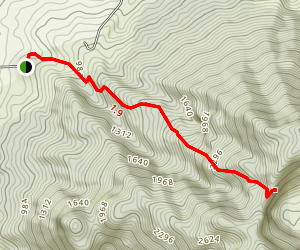 Mount Liamuiga Trail Map
