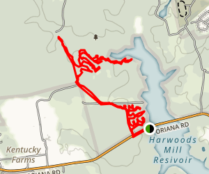 Harwood's Mill Trail Map