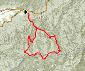 Anthony Creek Leadbetter Ridge Loop Trail Map