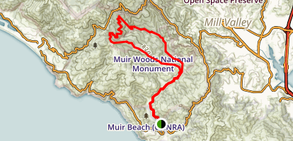 Muir Woods Redwood Creek Trail Map