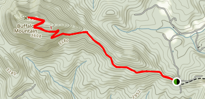 Buffalo Mountain Trail Map