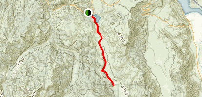 Silver King Trail Map