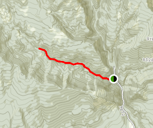 First Fork Trail Map