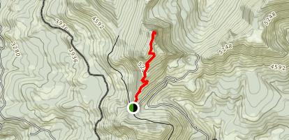 Coffin Mountain Trail Map