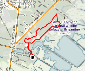 Songbird Trail Loop Map