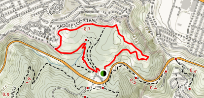 Saddle / Bog Trails Loop Map