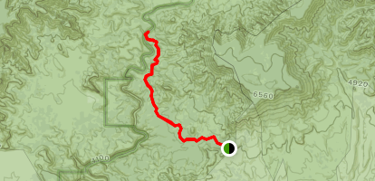 Dogie Trail Map
