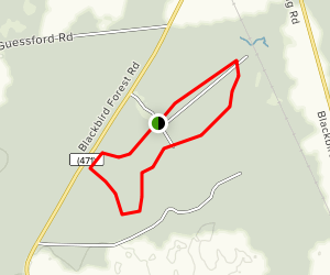 Tybout Tract Trail Map