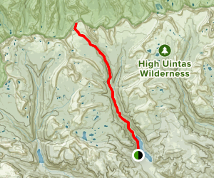 Upper Lake Fork Trail Map