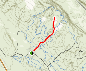 Dinosaur Megasteps Trail Map