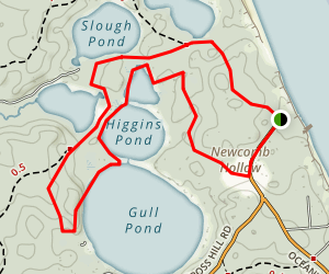 Newcomb Hollow Ponds Trail Map