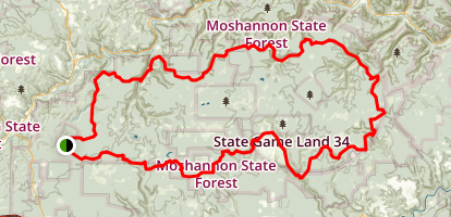 Quehanna Trail Map
