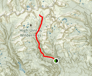 Yellowstone Creek Trail Map