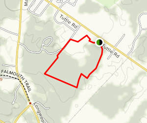 Cumberland Town Forest Map