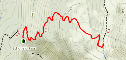 Schofield Pass Trail Map