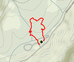 Big Pine Loop Trail Map