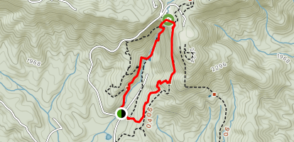 Amicacola Falls Trail Map