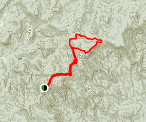 Springer Mountain Loop Trail Map
