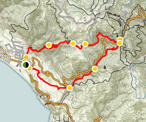 Dipsea Steep Ravine Matt Davis Loop Trail Map