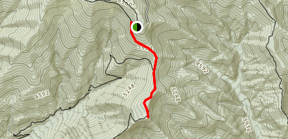 Andrew's Bald Trail Map