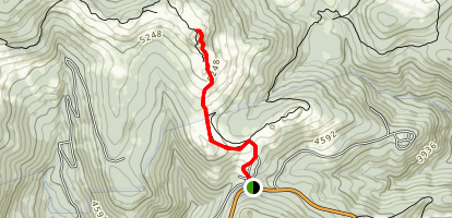 Wilburn Ridge via Appalachian Trail Map