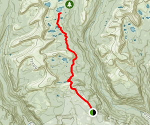 Spider Lake Trail Map