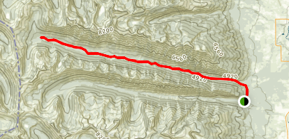 Sawtooth Creek Map