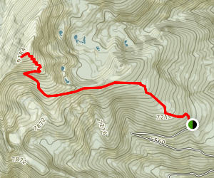 Saint Mary Peak Trail Map