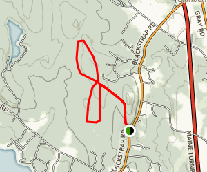 North Falmouth Community Forest Map
