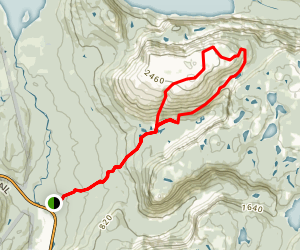 Gros Morne Mountain Trail Map