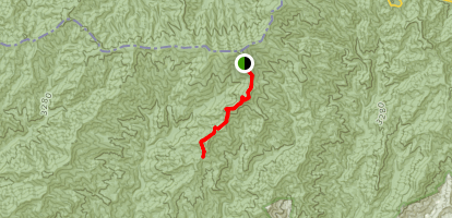 Forney Ridge Trail Map