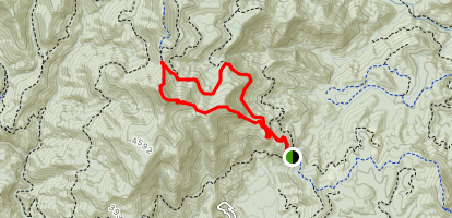 Pilot Mountain Trail Map