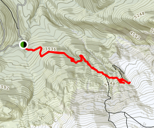 Heliotrope Ridge Trail Map