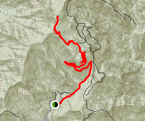 Graybeard Trail Map