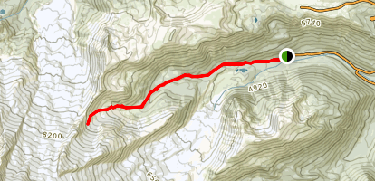 Glacier Basin Trail Map