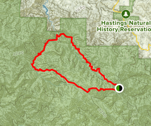 Pine Valley Miller Canyon Trail Map