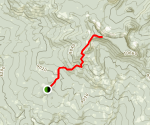Black Mountain (West Summit) Trail Map