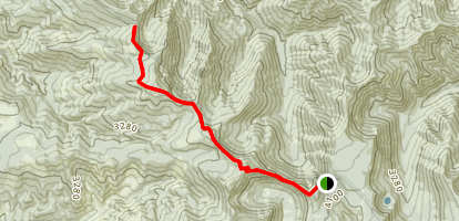 Old Baldy Trail Map