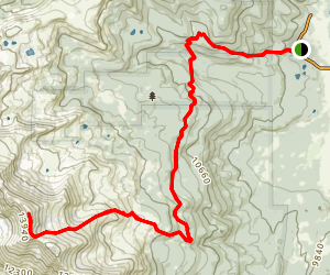 Mount Massive Trail (via North East) Map