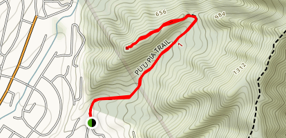 Puu Pia Trail Map