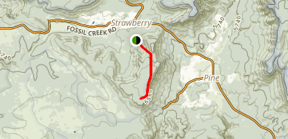 Strawberry Mountain Trail Map