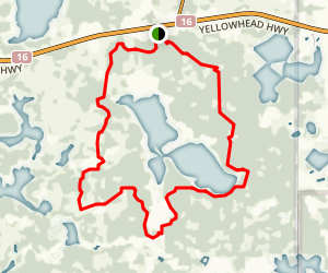 Wood Bison Trail #11 Map