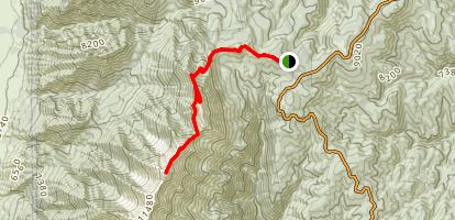 Mount Nebo North Trail Map